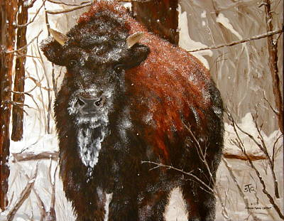 Painting - Yellowstone Calf by Sharon Tabor