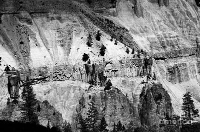 Photograph - Yellowstone Canyon In Monochrome by Darleen Stry
