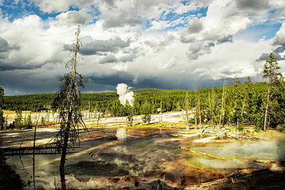 Photograph - Yellowstone Colors #3 by Scott Read