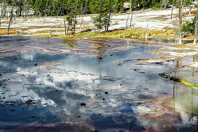 Photograph - Yellowstone Colors #4 by Scott Read