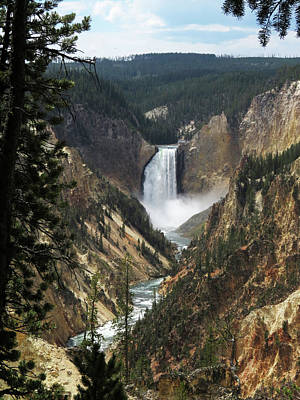 Photograph - Yellowstone Falls by Laurel Powell