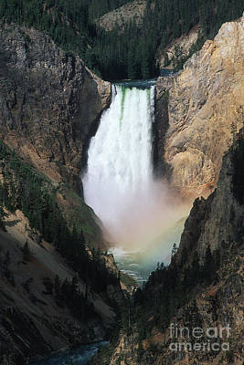 Photograph - Yellowstone Falls by Stan and Anne Foster