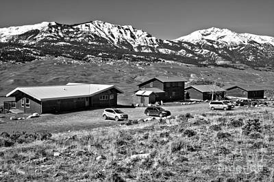 Photograph - Yellowstone Forever Field Campus Spring Black And White by Adam Jewell