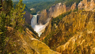 Photograph - Yellowstone Grand Canyon by Ginger Wakem