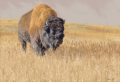 Buffalo Digital Art - Yellowstone King by Aaron Blaise