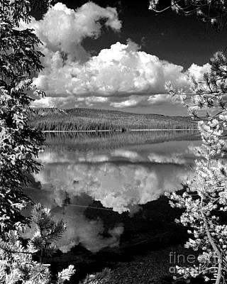 Yellowstone Lake Art Print by Diane E Berry