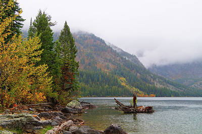 Photograph - Yellowstone Lake Fall by Broderick Delaney