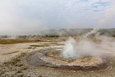 Photograph - Yellowstone Landscape by Penny Meyers