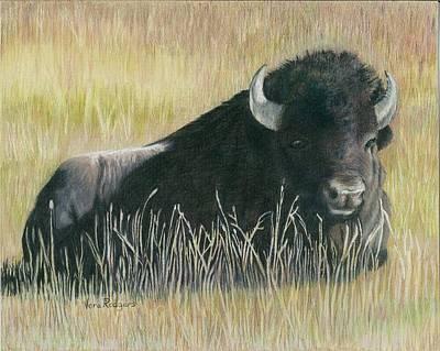 Yellowstone Loner Art Print by Vera Rodgers