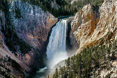Photograph - Yellowstone Lower Falls Point by Alex Galkin