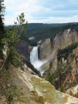 Photograph - Yellowstone Lower Falls by Laurel Powell
