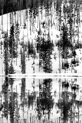 Photograph - Yellowstone, Madison River by Jeff Brunton