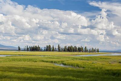 Yellowstone Meadow Art Print