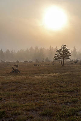 Photograph - Yellowstone - Morning by Penny Meyers