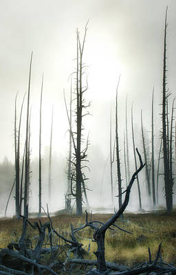 Photograph - Yellowstone N P by James Bethanis