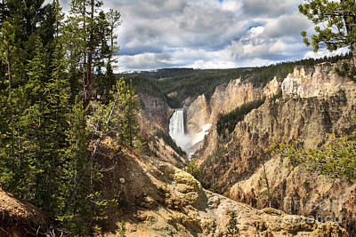 Photograph - Yellowstone National Park by Robert Bales
