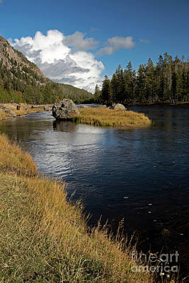 Photograph - Yellowstone Nat'l Park Madison River by Cindy Murphy - NightVisions
