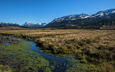 Photograph - Yellowstone Np Near Soda Butte by Alex Galkin