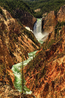 Photograph - Yellowstone by Rick Furmanek