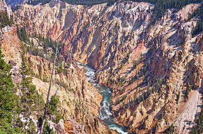 Yellowstone Photograph - Yellowstone River by Delphimages Photo Creations