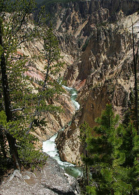 Yellowstone River Art Print by Linda Phelps