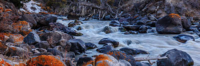 Photograph - Yellowstone River Rapids 2 by Robert Caddy