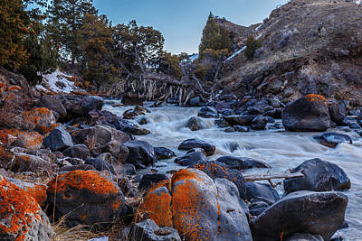 Photograph - Yellowstone River Rapids by Robert Caddy
