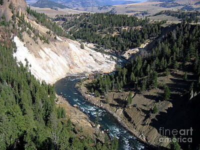 Painting - Yellowstone River Wyoming by Larry Bacon