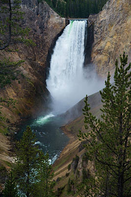 Photograph - Yellowstone's Lower Falls by Gary Lengyel
