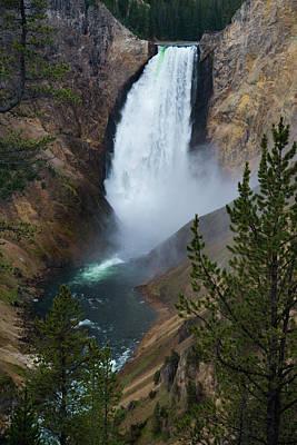Photograph - Yellowstone's Lower Falls by Gary Lengyel