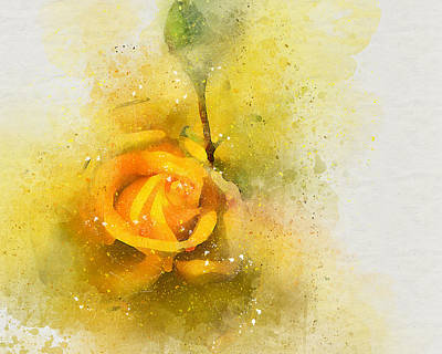Photograph - Yelow Rose by Peggy Cooper