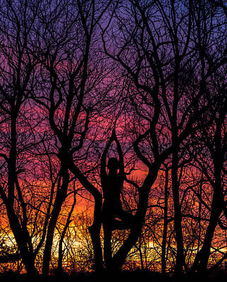 Caring Mother Photograph - Yoga Tree Pose Sunrise One With The Trees by Terry DeLuco