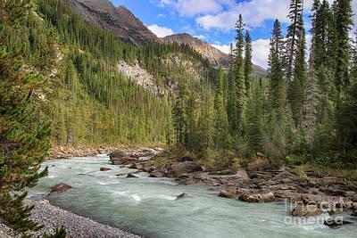 Photograph - Yoho River Bend by Teresa Zieba