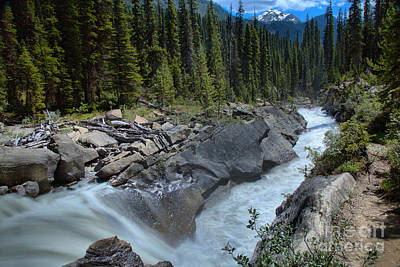 Photograph - Yoho River Falls by Adam Jewell