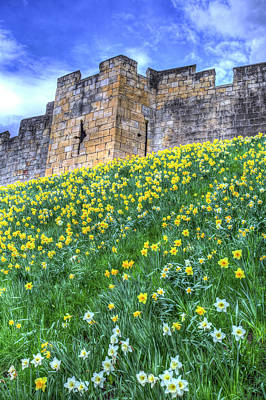 Photograph - York City Walls by David Pyatt