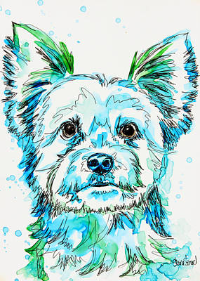 Yorkshire Terrier Watercolor Painting - Yorkie In Green by Shaina Stinard