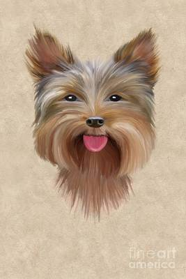 Yorkshire Terrier Wall Art - Painting - Yorkie by John Edwards
