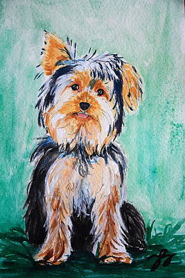 Dog Playing Ball Painting - Yorkie by Tonya Self