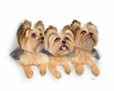 Painting - Yorkie Trio by Catia Cho