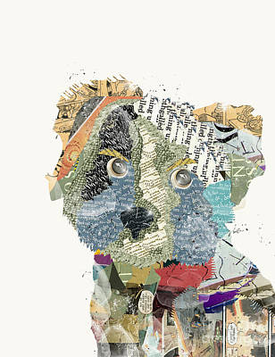 Yorkshire Terrier Art Print