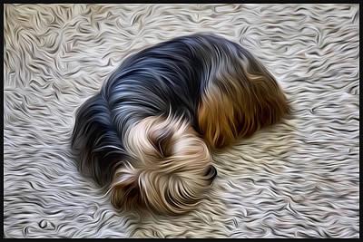 Terrier Digital Art - Yorkshire Terrier by Craig Stilson