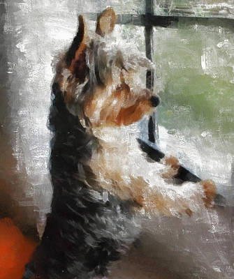 Yorkshire Terrier Wall Art - Painting - Yorkshire Terrier  Its Warm In Here But So Much More Interesting Out There by JG Keevil