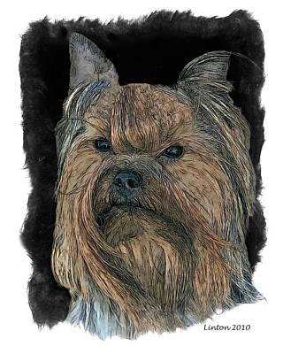 Terrier Digital Art - Yorkshire Terrier by Larry Linton