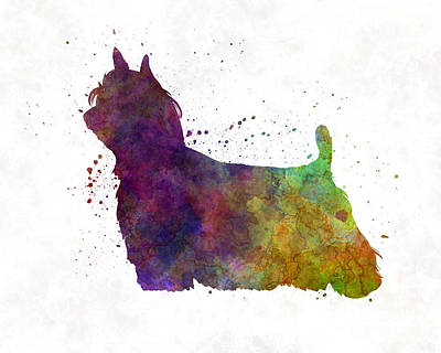 Yorkshire Terrier Long Hair In Watercolor Art Print by Pablo Romero