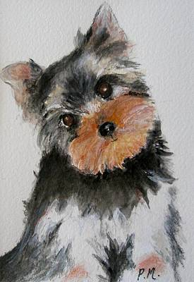 Yorkshire Terrier Art Print by Pamela Morris