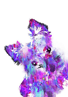 Yorkshire Terrier Watercolor Painting - Yorkshire Terrier by Rosalia Simunovic