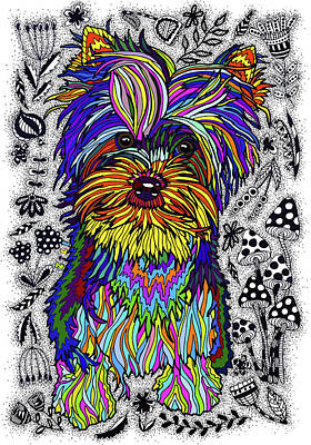 Drawing - Yorkshire Terrier by ZileArt