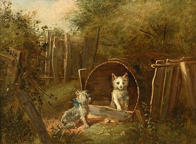 Painting - Yorkshire Terriers Alexander And Diogenes by Celestial Images