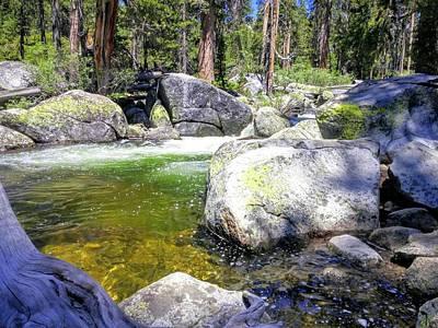 Photograph - Yosemite Alive by Richard Yates