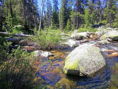Photograph - Yosemite Hidden Stream by Richard Yates